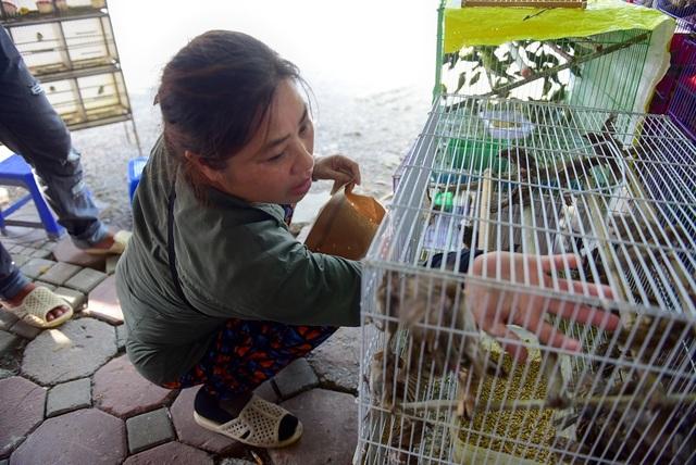 .Cũng là một chủ cửa hàng bán chim cảnh, chị Tuyết cho biết: Chim phóng sinh năm nay khá đắt, đắt hơn so với năm trước từ 3.000 - 5.000 đồng.