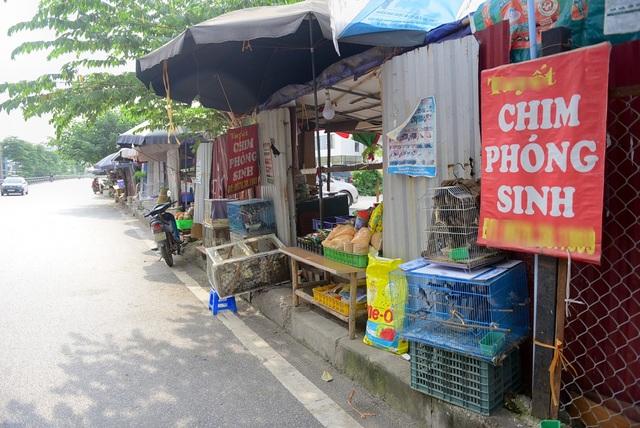 Biển báo bán chim phóng sinh được treo ở nhiều nơi.