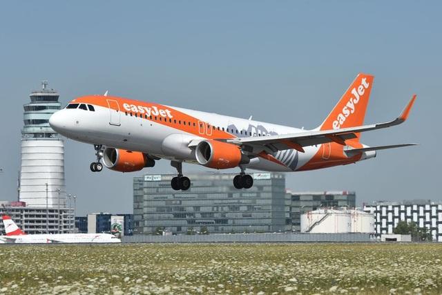 Chuyến bay bất ngờ bị hủy vì tiếp viên phi hành đoàn… thấy mệt mỏi - 3