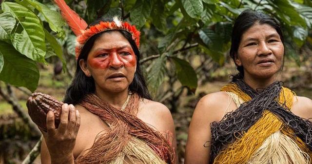 Cuộc sống của những người dân thuộc các bộ tộc sống biệt lập ở rừng rậm Amazon đang bị đe dọa