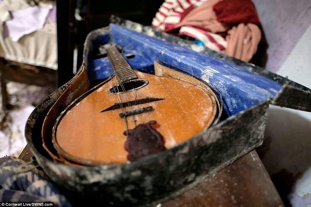 Một cây đàn mandolin với những dây đàn đã đứt.