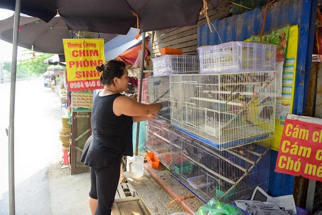 Số lượng chim bán ra tăng đột biến, chị Hương, chủ một cửa hàng bán chim cảnh, cho biết.
