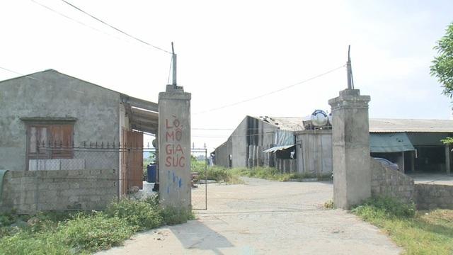 Cơ sở giết mổ tập trung của bà Lan được đầu tư trên khu đất rộng 5.000 m2