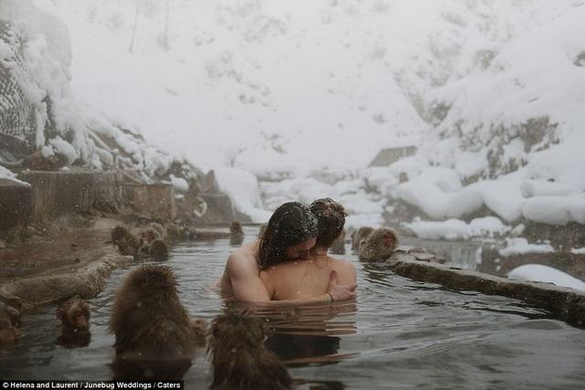Cặp đôi tắm suối nước nóng ở thung lũng Jigokudani, Nagano, Nhật Bản. Cùng tắm trong suối với cặp đôi là những chú khỉ sinh sống gần suối.