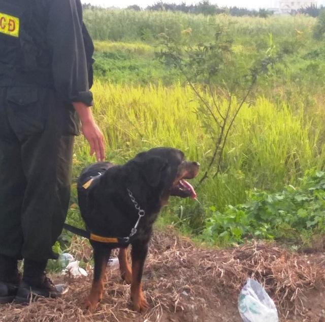 Công an quận 9 đã huy động thêm 40 cán bộ, chiến sĩ của lực lượng Trung đoàn cảnh sát cơ động và 10 chú chó nghiệp vụ đến hiện trường để truy bắt tên cướp.