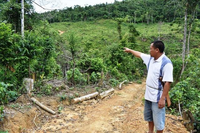 Anh Nguyễn Khắc Thành, trú tại thôn 5 Thanh Lạng, xã Thanh Hoá bức xúc trước việc đất rừng của anh bị hộ gia đình anh Nguyễn Văn Phúc chiếm dụng nhưng xã không thể giải quyết một cách dứt điểm
