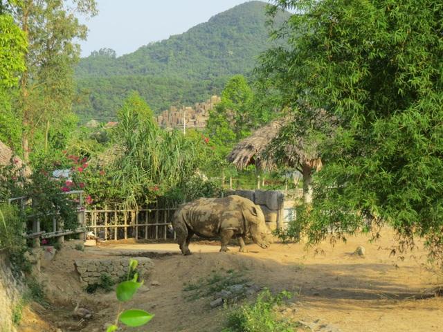 Khu du lịch sinh thái Diễm Lâm: Nơi trải nghiệm cung bậc cuộc sống - 3