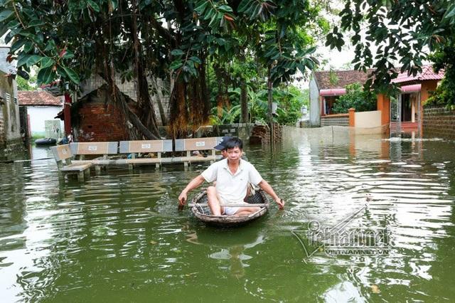 Anh Nguyễn Tự Ba chèo thuyền đi thăm đàn lợn