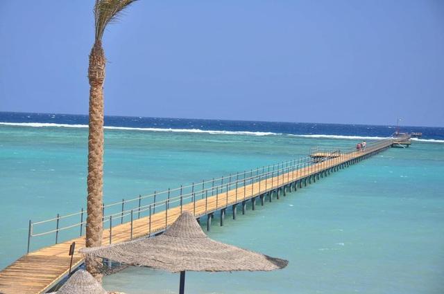 Bãi biển Marsa Alam thơ mộng ở Ai Cập là điểm đến thu hút khách quốc tế