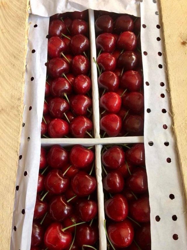Cherry VIP sang chảnh giá triệu bạc, tuần vẫn bán vài trăm kg cho đại gia - 2