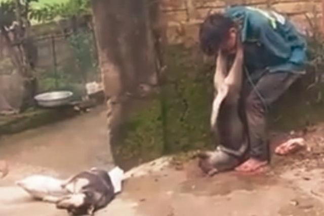 Đối tượng bị người dân trói và treo chó vào cổ