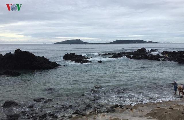 Biển đảo Lý Sơn - tuyến du ngoạn kỳ thú - 18