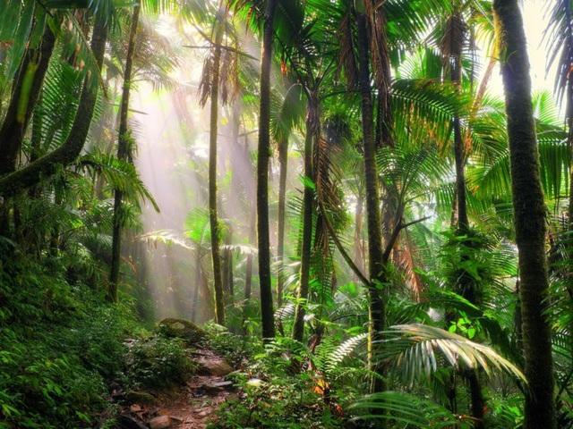 20 thắng cảnh thiên nhiên nổi tiếng thế giới - 18
