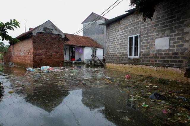 Đủ các loại rác sinh hoạt, xác động vật chết… trôi dạt vào làng. Cuộc sống người dân nơi đây gặp rất nhiều khó khăn.