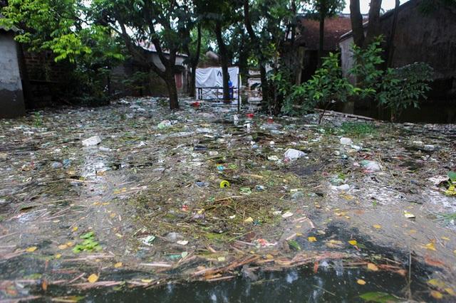 Người dân ra sức thu gom nhưng không xuể, rác từ nhiều nơi liên tục đổ dồn về, bao quanh nhiều làng thuộc xã Nam Phương Tiến.