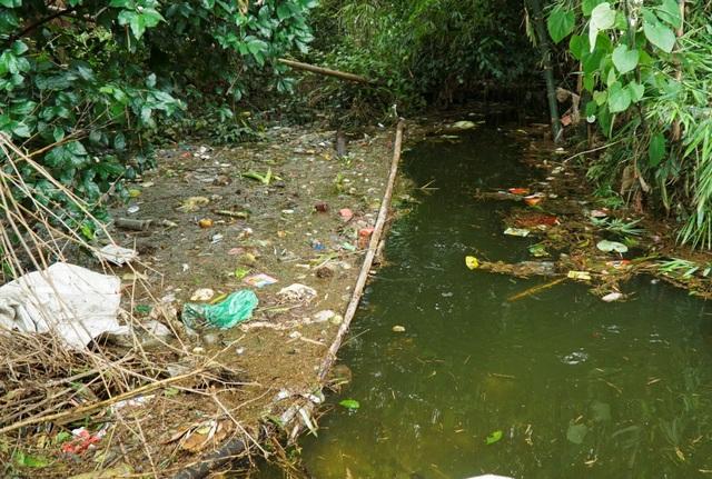 Cũng trong tình trạng tương tự, ở thôn Đĩnh Tú (xã Cấn Hữu, Quốc Oai) rác thải ngập tràn, người dân nơi đây phải dùng thanh tre dài, cản không cho rác trôi vào làng.