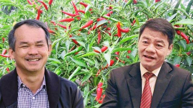 Các doanh nghiệp của ông Trần Bá Dương sẽ tham gia hỗ trợ bầu Đức cơ cấu nợ