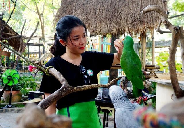 Quán có khoảng 20 loài vẹt có nguồn gốc từ châu Á, châu Phi đến châu Mỹ.