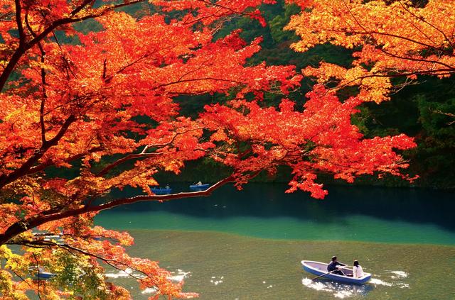 Lãng mạn mùa thu xứ Phù tang
