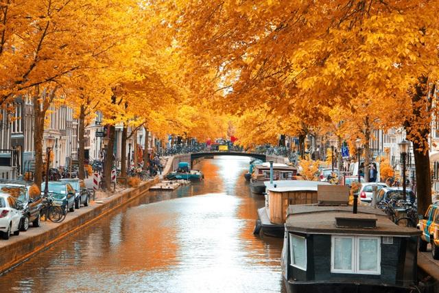Quyến rũ sắc thu Hà Lan