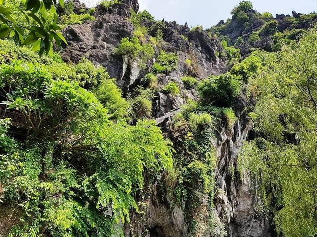 Dù được che phủ cây xanh nhưng vẫn dễ nhìn thấy những điểm trên núi Cái Hạ bị xâm hại.