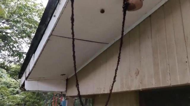 Kỹ sư điện người Brazil đã đăng tải cảnh tượng ấn tượng này