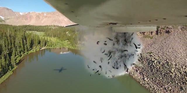 Cá từ phần đuôi máy bay rơi xuống hồ trên núi ở bang Utah (Ảnh: Weather)