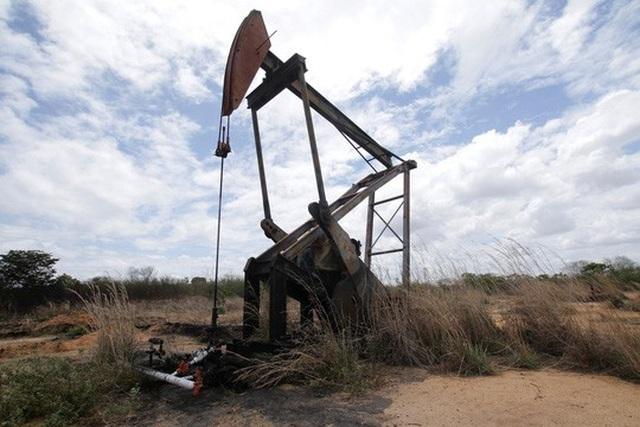 Ước tính cần ít nhất 20 tỉ USD để khai thác trữ lượng dầu mỏ tại khu vực quanh thị trấn Atapirire Ảnh: REUTERS