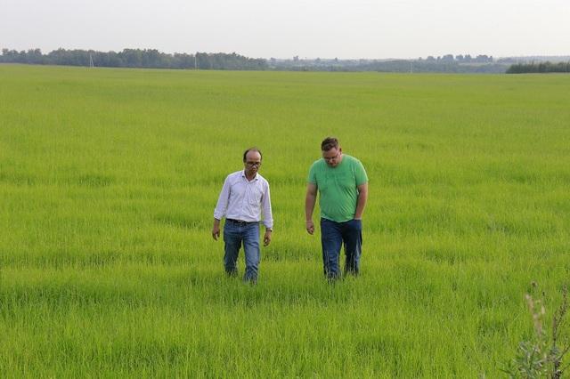 Ông Rasul và các cộng sự người Việt, người Nga trên cánh đồng TH rộng hàng ngàn ha mới được vỡ hoang 1-2 vụ