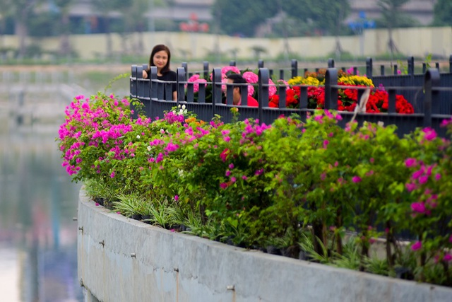 Toàn cảnh lá phổi xanh 130.000 m2 mới hoạt động ở Hà Nội - 5