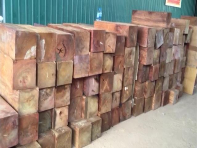Số lượng lớn gỗ hương bị phát hiện