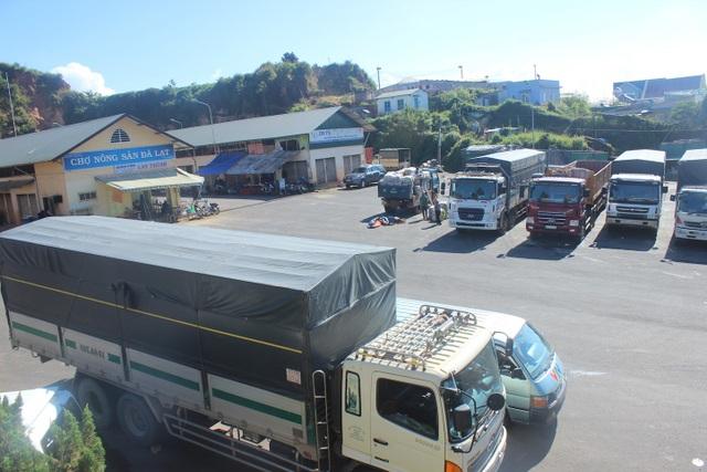 Hàng trăm tấn nông sản Trung Quốc được tập kết tại chợ nông sản Đà Lạt sau khi sơ chế, được xuất đi các thị trường tiêu thụ