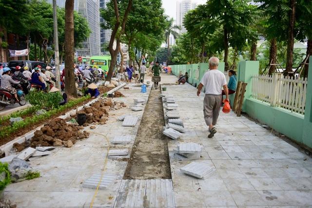 Toàn cảnh lá phổi xanh 130.000 m2 mới hoạt động ở Hà Nội - 13