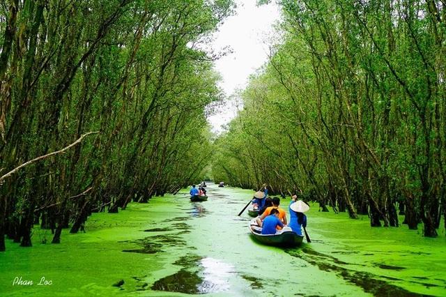 Rừng tràm Trà Sư điểm đến không nên bỏ lỡ vào mùa nước nổi. Ảnh: Phan Bách Lộc