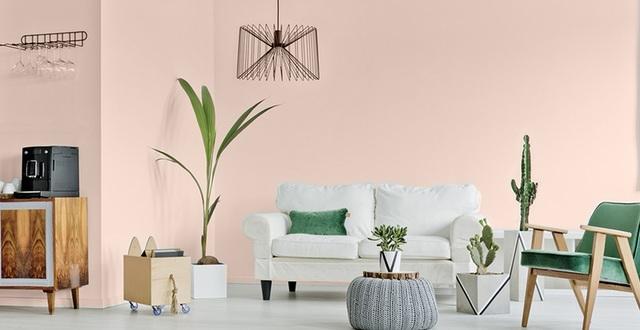 Một ít cây xanh cho không gian nội thất sẽ giúp ngôi nhà sinh động hơn