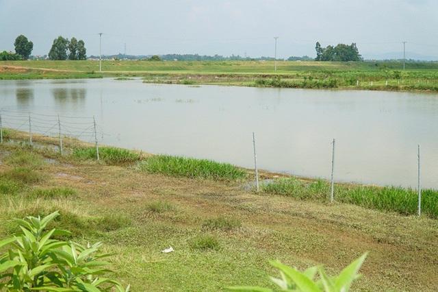 Tại km36 đoạn hướng từ Hà Nội đi Lào Cai (thuộc địa phận tỉnh Vĩnh Phúc), người dân phá hàng chục mét rào lưới để lấy lối cho gia súc qua lại.