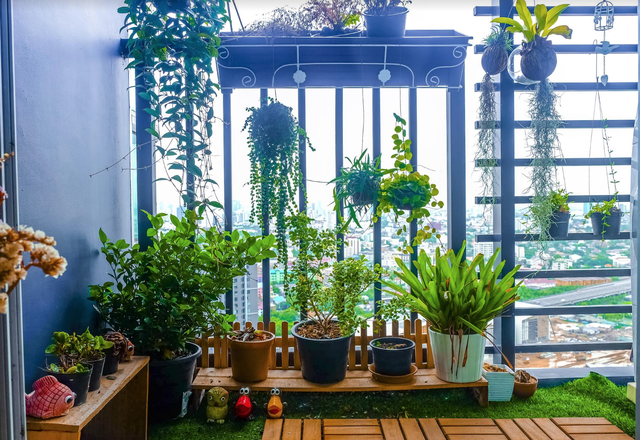 Vườn treo giúp không gian ngoại thất nhà bạn thêm phần sinh động, dễ chịu