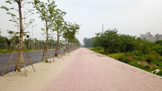 Con đường có vỉa hè mỗi bên rộng từ 7-10 m và đang được hoàn thiện.