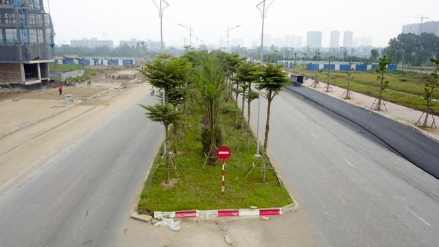 Tuyến đường có dải phân cách rộng từ 5-7m, được trồng cây bàng lá nhỏ Đài Loan và cây cọ dầu.
