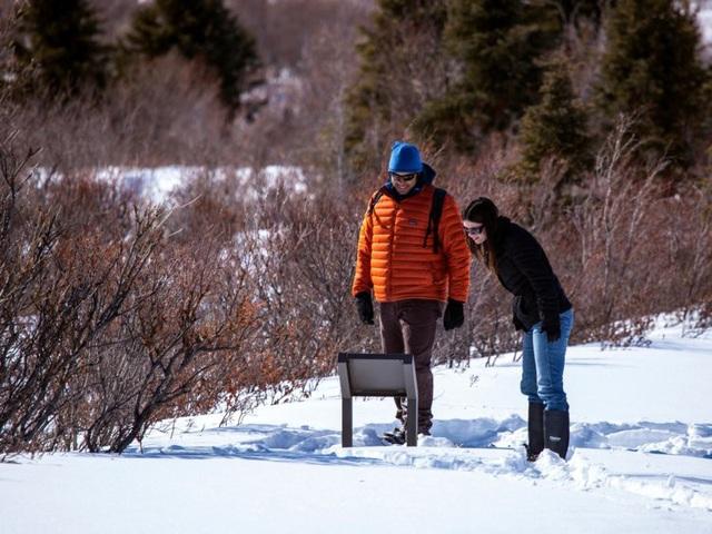 Các địa điểm du lịch khác nhau đến cỡ nào giữa mùa cao điểm và thấp điểm - 12