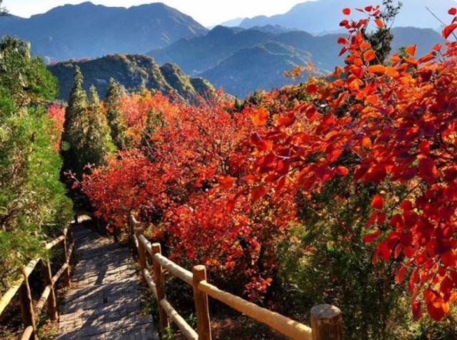 Những chuyến du lịch mùa thu sao có thể bỏ lỡ những điểm đến lãng mạn này - 11