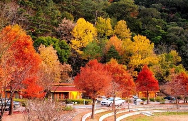 Những chuyến du lịch mùa thu sao có thể bỏ lỡ những điểm đến lãng mạn này - 12