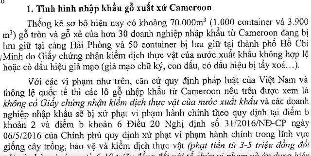 Báo cáo của Bộ Nông nghiệp về tình trạng nhập gỗ từ Cameroon