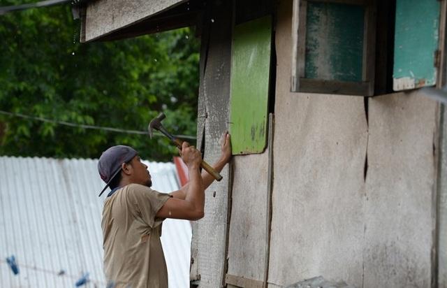 Nhiều người lo ngại bão Mangkhut đổ bộ sẽ tàn phá hoa màu tại Cagayan và Isabela khi vụ thu hoạch đang bắt đầu. Nông dân Philippines đang chạy đua với thời gian để vớt vát số thóc lúa còn lại trước khi bão ập tới. (Ảnh: AFP)
