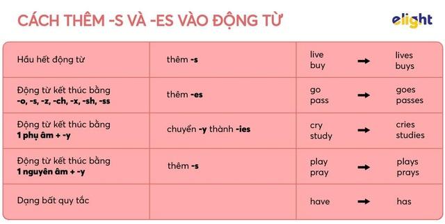 Học tiếng Anh: Quy tắc đọc và chia -s, -es cho động từ mà bạn nên thuộc lòng - 1