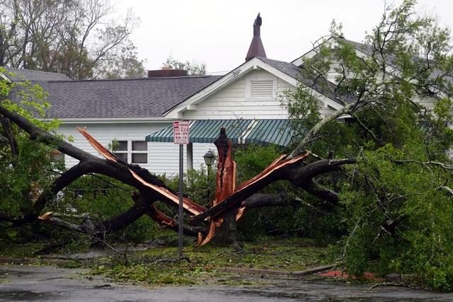 Tại Bắc Carolina, một phụ nữ bị lên cơn đau tim và qua đời sau khi xe cứu thương không thể tới kịp nhà của bà do các đống đổ nát chắn ngang đường lúc bão ập đến.
