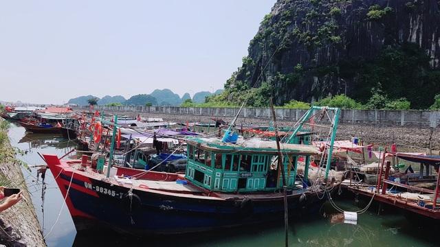 Tàu tuyền đã vào neo đậu trành trú bão tại khu bến Do, TP. Cẩm Phả, Quảng Ninh