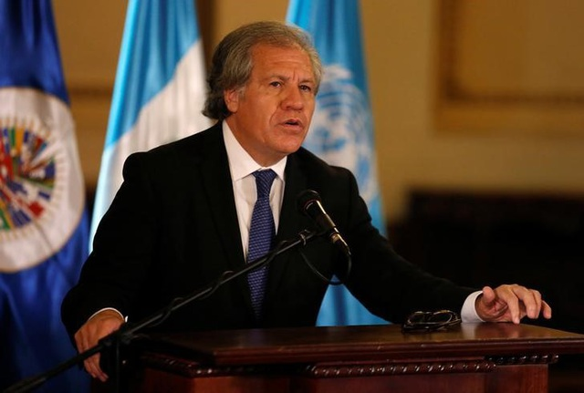 Tổng thư ký Tổ chức Các quốc gia châu Mỹ (OAS) Luis Almagro (Ảnh: Reuters)