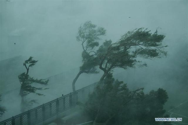 Đây được coi là cơn bão mạnh nhất thế giới trong năm nay và cũng là một trong những cơn bão mạnh nhất càn quét khu vực châu Á trong vòng nhiều thập niên qua. (Ảnh: China News)