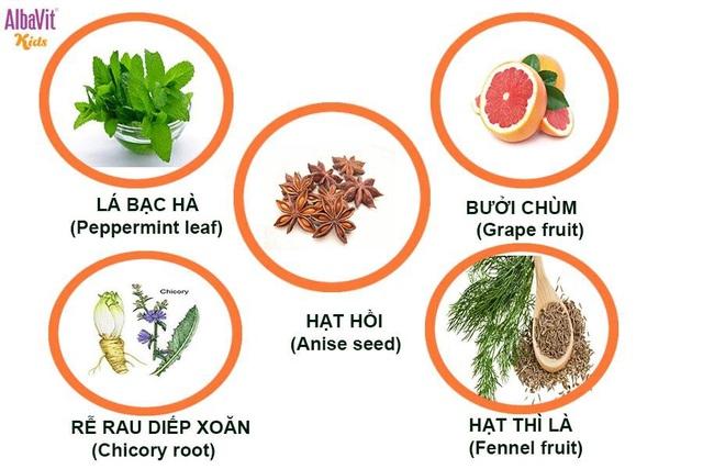 Các loại thảo dược được người châu Âu sử dụng giúp ăn ngon và điều trị các vấn đề về tiêu hóa